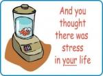 medium_-stress-.4.jpg